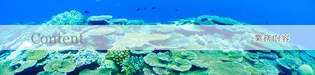 日本最南端の環境調査会社「海游」